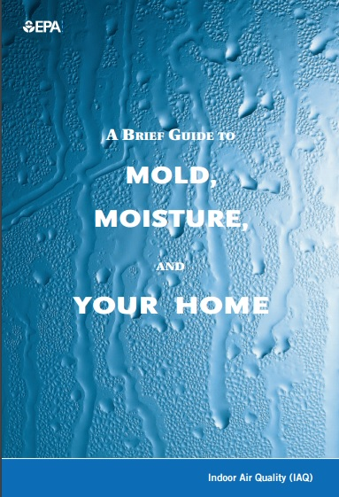 A Brief guide to Mold, Moisture and Your Home Preview