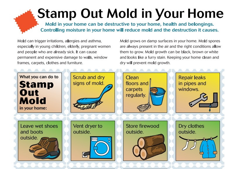 Stamp Out Mold Flyer Preview