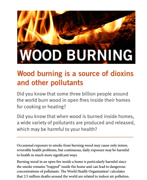 Wood Burning: a Source of Dioxins Preview